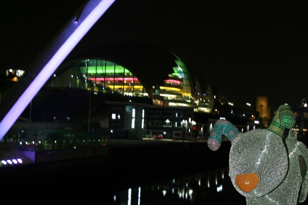 Disco Snowdog goes for a night on the toon